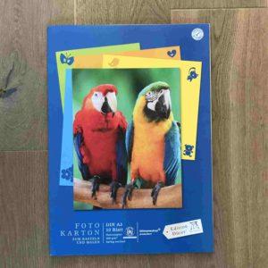 Staufen Fotokarton A3 10 Bogen